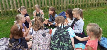 Groep 5 picknickt bij het Hertenkamp